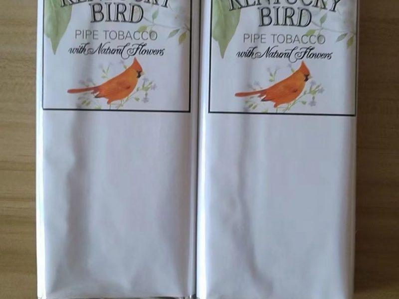 金丝雀 Kentucky bird
